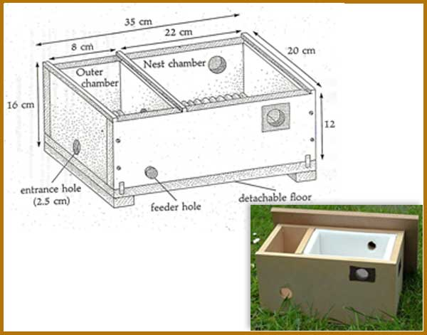 Components of a beehive box pictures to pin on pinterest